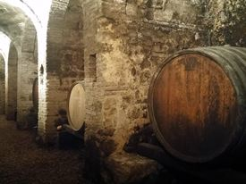 Marche Wine Tour 11